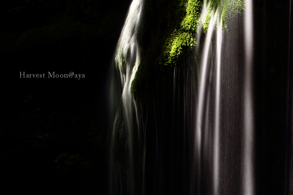A Waterfall_b0208495_23482556.jpg