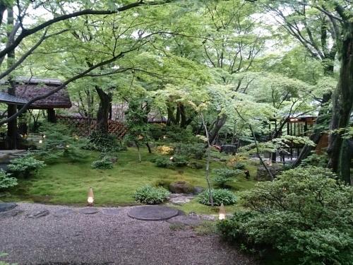 名古屋 八事の森_f0323446_08122998.jpg