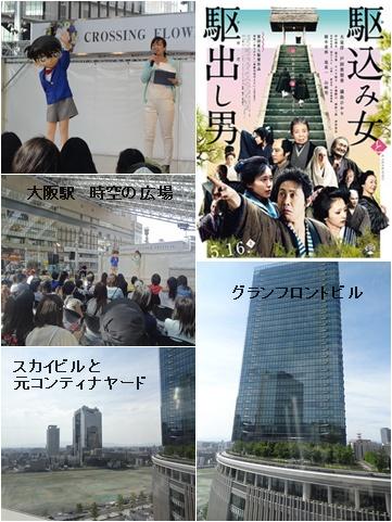 5月の映画と本 & バッグの収納 & 紫陽花満開_a0084343_13373129.jpg