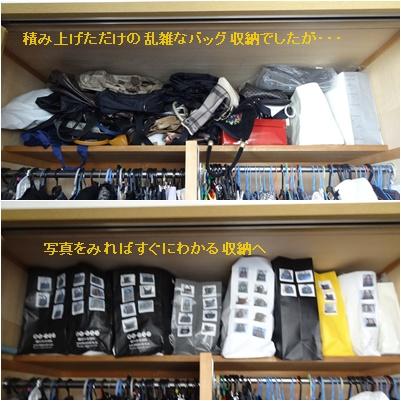 5月の映画と本 & バッグの収納 & 紫陽花満開_a0084343_1754199.jpg