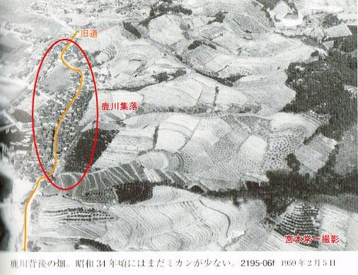 能美島・鹿川集落の山側_d0089494_10274549.jpg