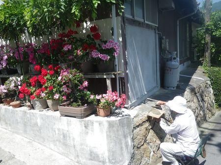 能美島・鹿川集落の山側_d0089494_10303552.jpg