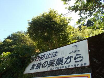 f0308898_2011477.jpg