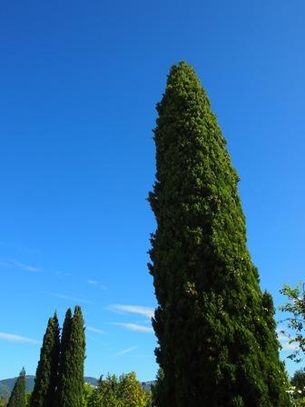 保育園の年度末アペロに行ってみた_b0168823_5123015.jpg