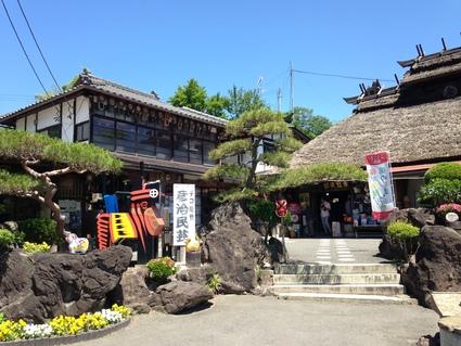『 高柴デコ祭り 』_f0259324_2093941.jpg