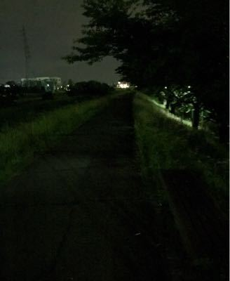 ホタル鑑賞ランニング ②  (64)_b0203925_1222674.jpg