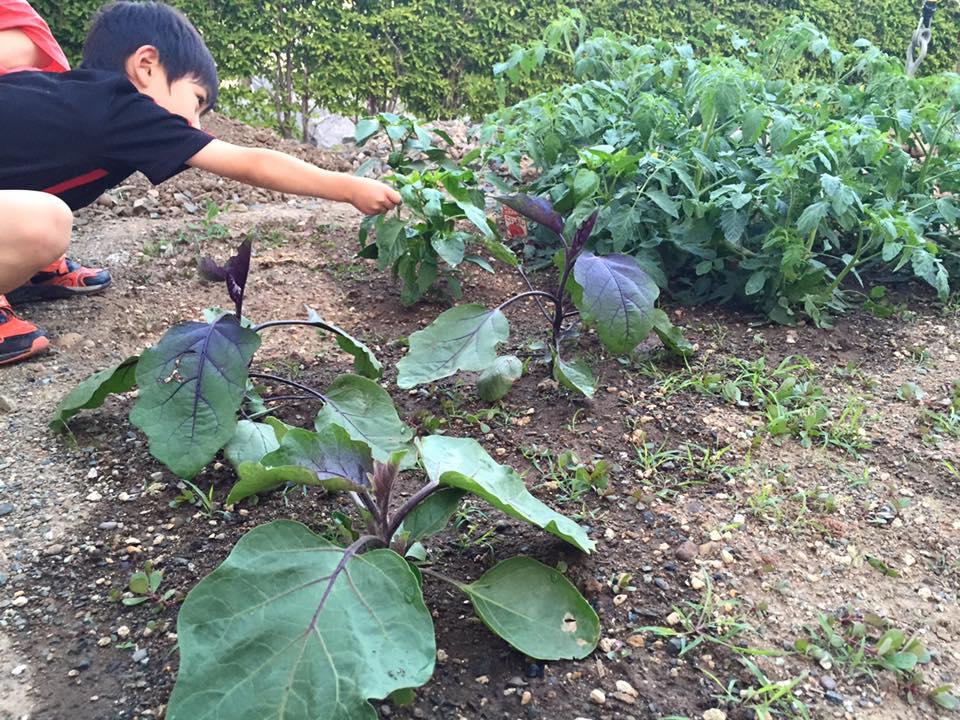 子ども達が「農」に親しむ機会を増やし「郷土愛」を育む_b0199244_1039492.jpg