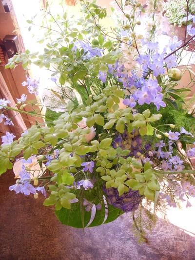 ご注文のお花たち。。。_a0229658_8125945.jpg
