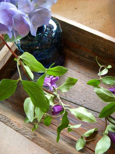 ご注文のお花たち。。。_a0229658_8274047.jpg