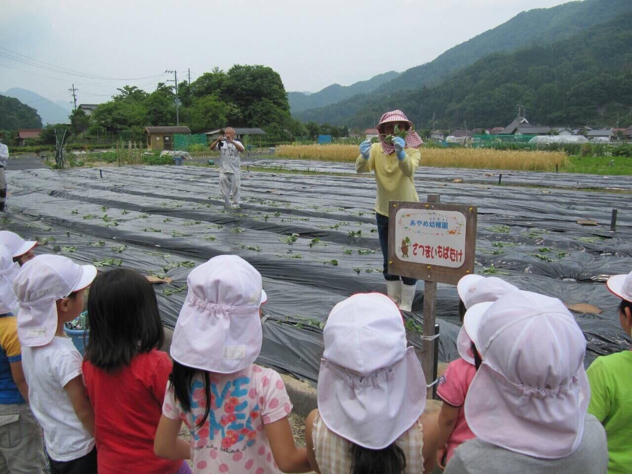 芋の苗植えバスの旅_f0324461_10590348.jpg