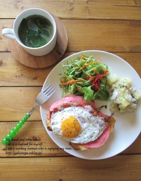 6.8 紳士なお弁当に婦人の朝ごはん_e0274872_21191085.jpg