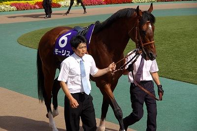 安田記念は、上がり馬モーリスが人気に応え4連勝でGI初制覇!_b0015386_2320361.jpg