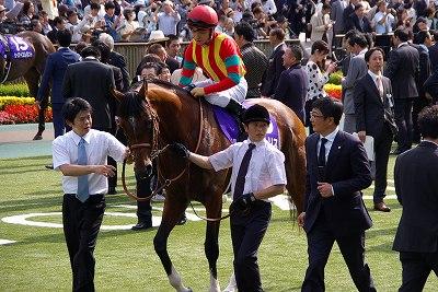 安田記念は、上がり馬モーリスが人気に応え4連勝でGI初制覇!_b0015386_2321119.jpg