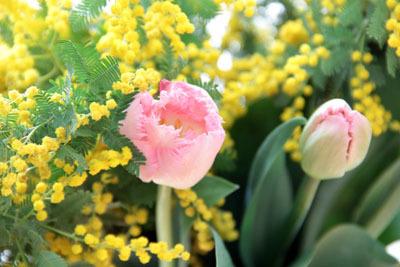 春の浜松レッスン vol. 2 *作品集_f0134809_16400152.jpg