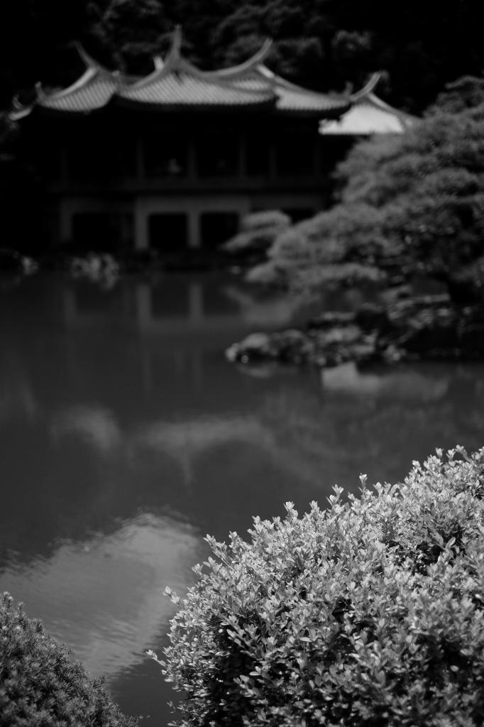 新宿御苑 標準レンズ+モノクローム ワークショップ _f0050534_00081713.jpg