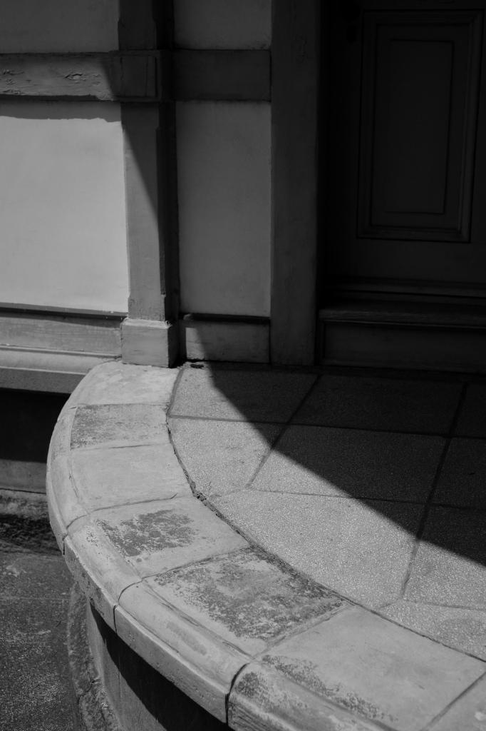 新宿御苑 標準レンズ+モノクローム ワークショップ _f0050534_00111586.jpg