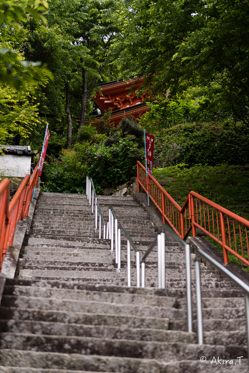 琵琶湖・竹生島 〜2〜_f0152550_21423213.jpg