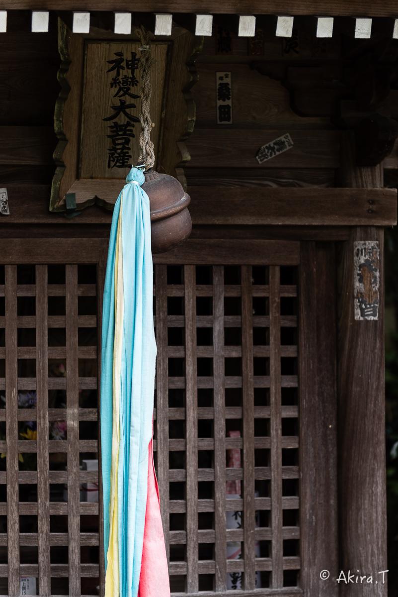 琵琶湖・竹生島 〜2〜_f0152550_21435236.jpg