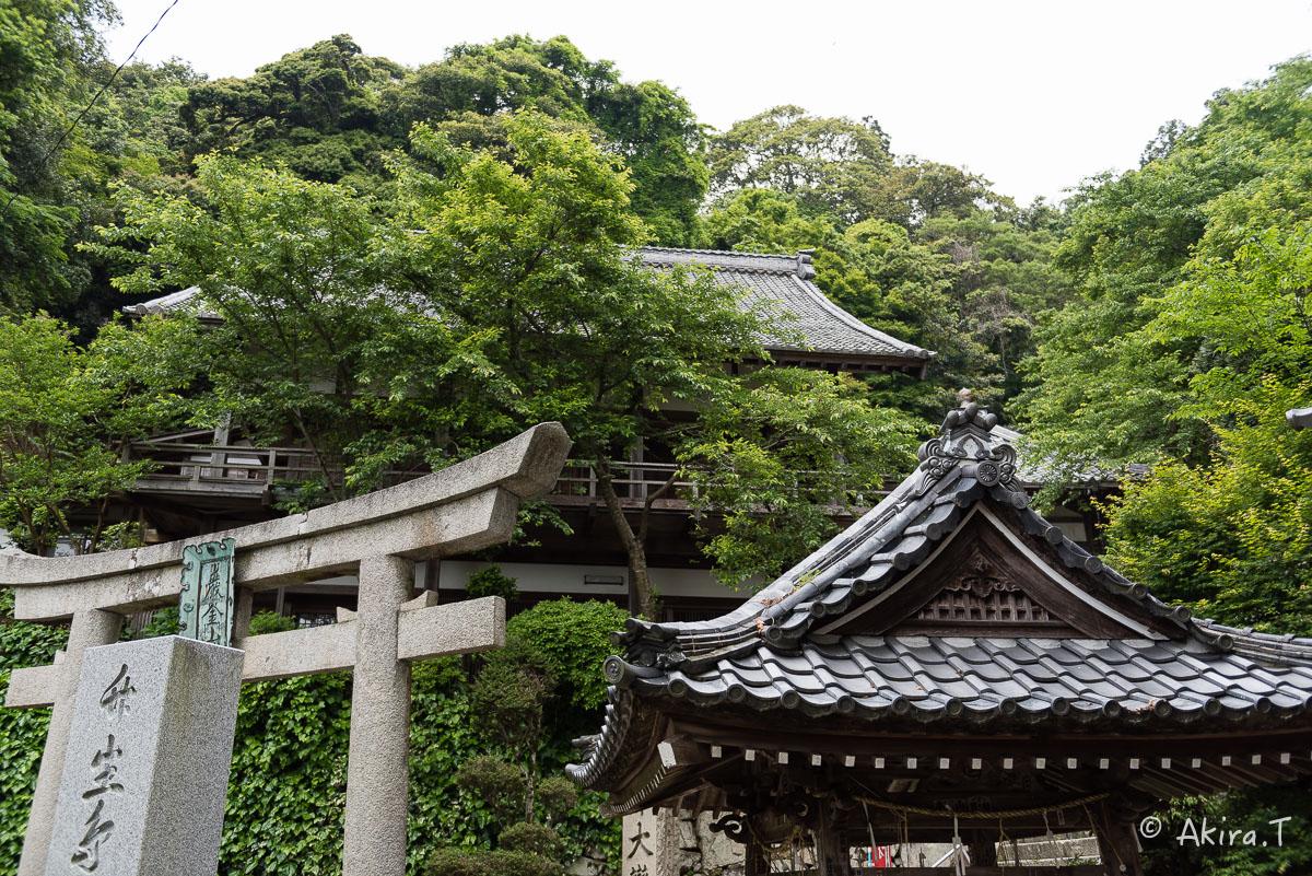琵琶湖・竹生島 〜2〜_f0152550_21441014.jpg