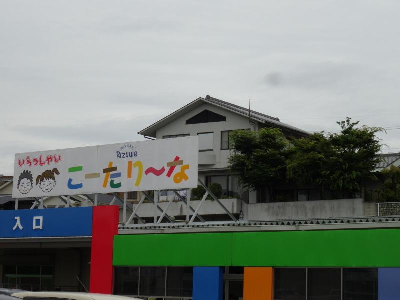 雨中にナルトキントキの植付完了     by     (TATE-misaki)_c0108460_22351096.jpg