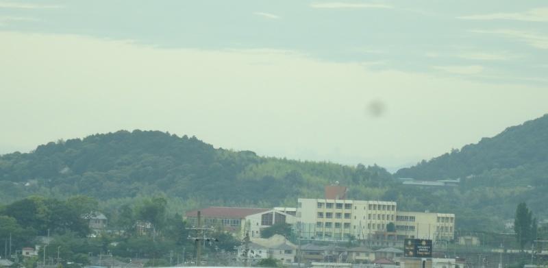雨中にナルトキントキの植付完了     by     (TATE-misaki)_c0108460_22352283.jpg