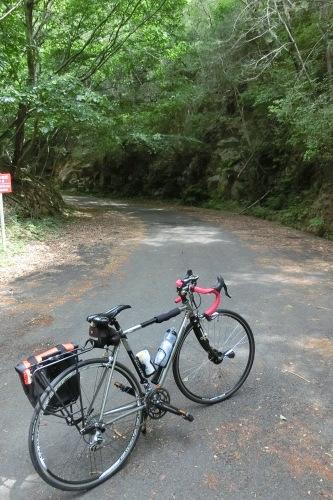 朝サイクリング(ヒルクライムコース)_b0332867_20354081.jpg