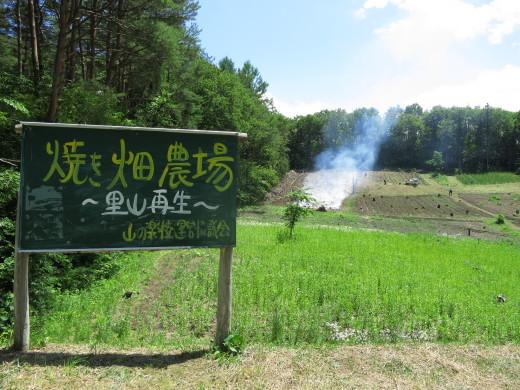 青森・南郷にて焼畑を見てきました!_b0206037_08210864.jpg