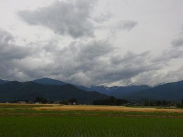 梅雨の始まり_a0014840_1415456.jpg