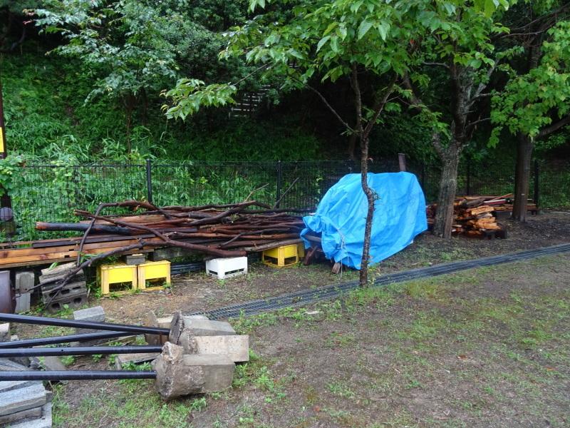 淡輪長生会来訪雨で中止 in うみべの森_c0108460_21424554.jpg