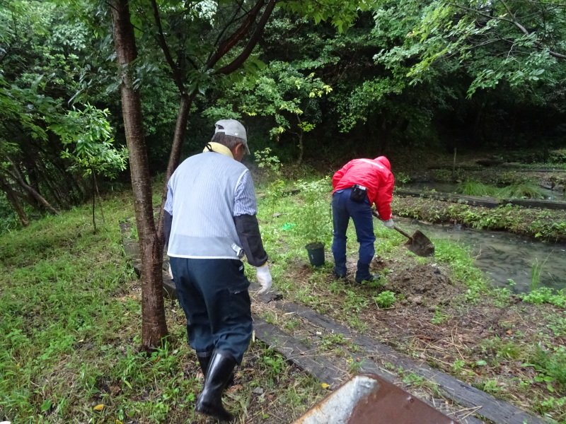 淡輪長生会来訪雨で中止 in うみべの森_c0108460_21424877.jpg
