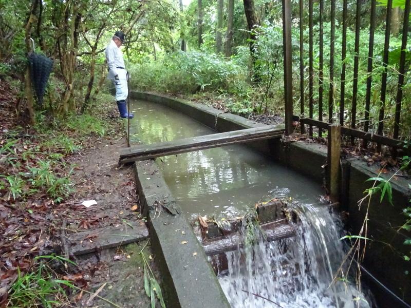 淡輪長生会来訪雨で中止 in うみべの森_c0108460_21474718.jpg