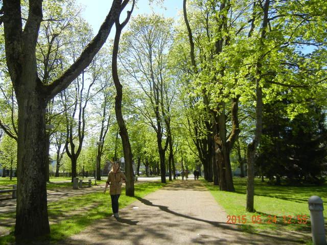 '15,6,9(火)エストニアのパルヌの荘園!_f0060461_10565388.jpg