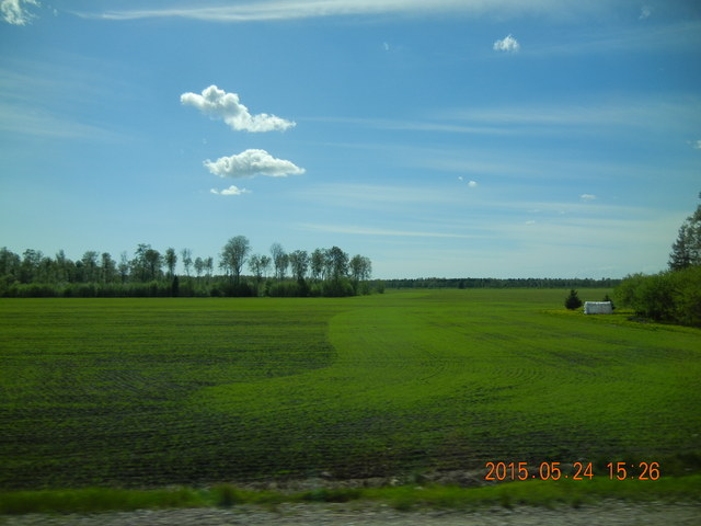 '15,6,9(火)エストニアのパルヌの荘園!_f0060461_1141319.jpg