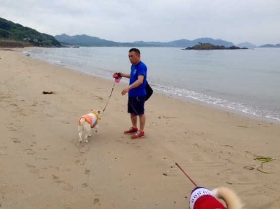 糸島の休日_f0232994_10262227.jpg