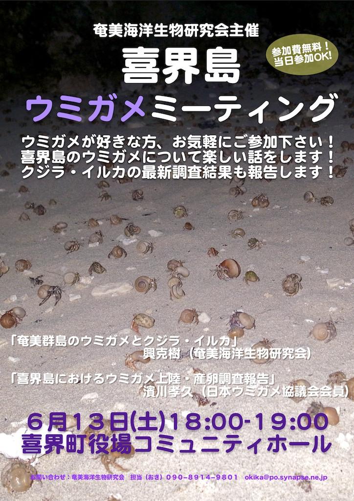 6/13(土)喜界島ウミガメミーティング開催_a0010095_14393285.jpg