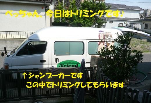 f0121712_21543653.jpg