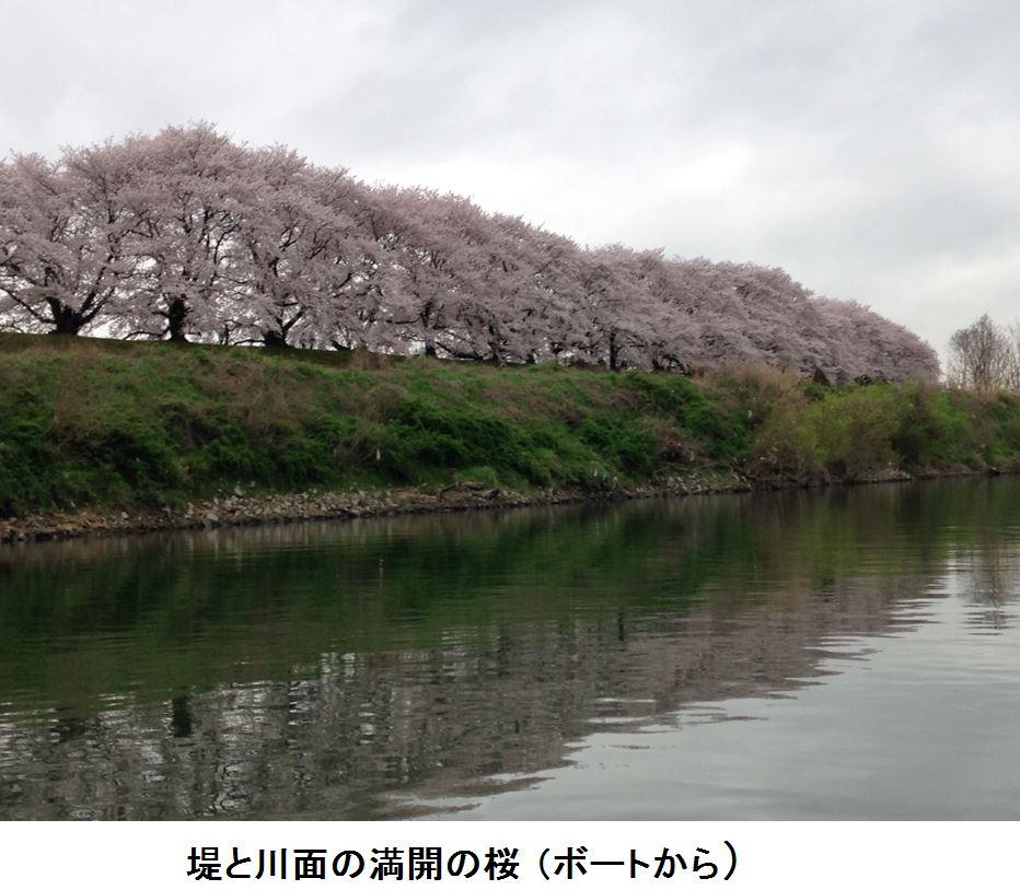 f0300125_20165987.jpg