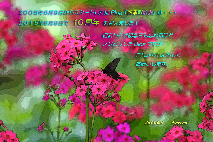 d0069235_1051885.jpg