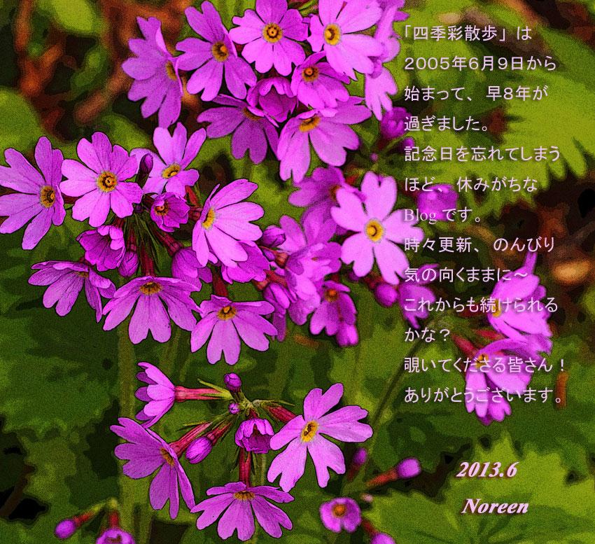 d0069235_1057456.jpg