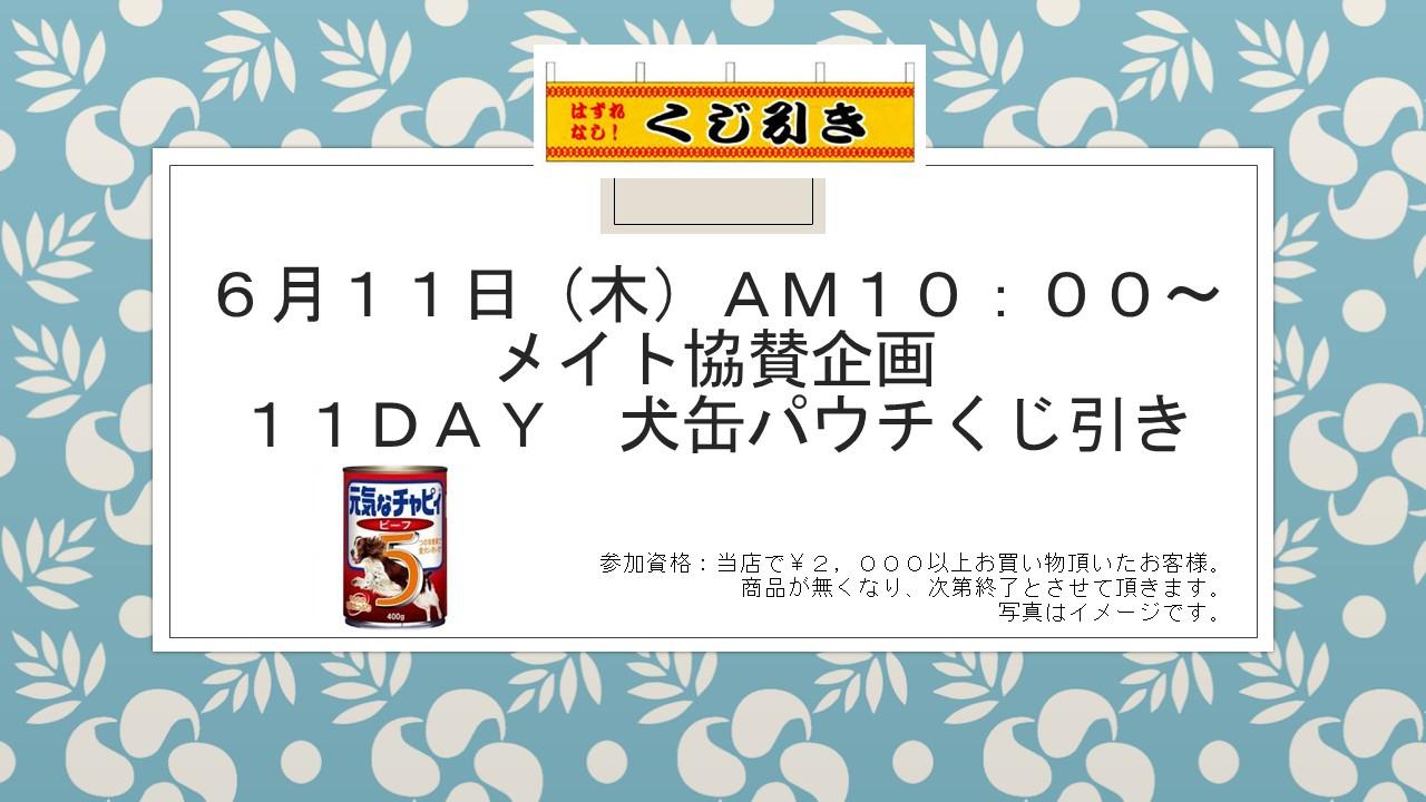 20150610 花金セール&イベント告知_e0181866_1013480.jpg