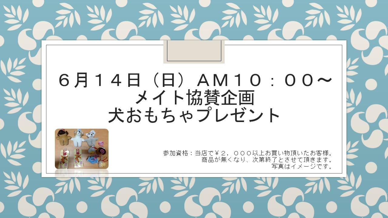 20150610 花金セール&イベント告知_e0181866_103722.jpg