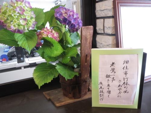 6月 季節の一句_a0158095_15365946.jpg