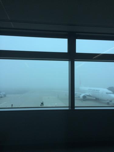 霧のため、欠航いたします_e0103327_12273528.jpg