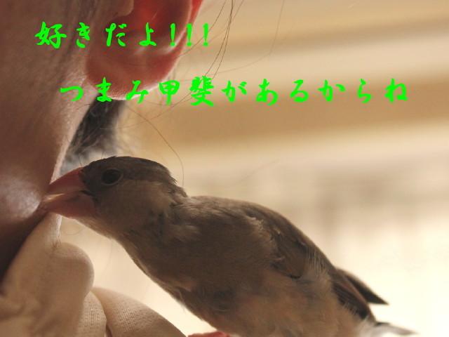 c0365734_21212148.jpg