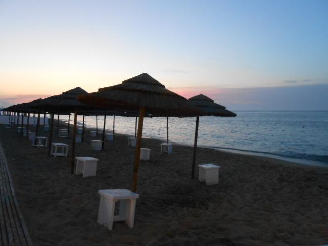 海辺のウェディング♡_b0305039_2056488.jpg