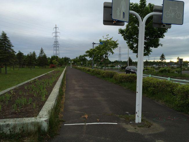 続・運動公園でランニング_a0156548_2283048.jpg
