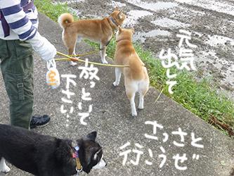 ボ〜ッとするワタクシ_b0057675_1034355.jpg