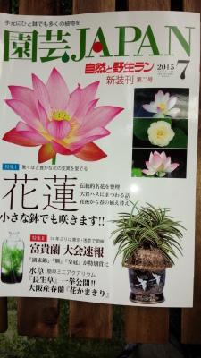 園芸JAPAN7月号入荷_f0356792_12571748.jpg