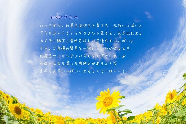 e0347334_23230085.jpg
