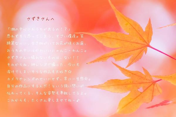 e0347334_23232815.jpg